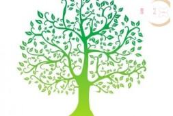 树的应用及习题